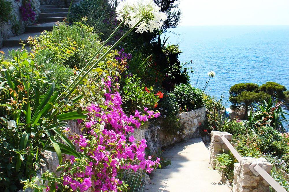 Giardino Mediterraneo Giardini Tipologie E Stili Paghera
