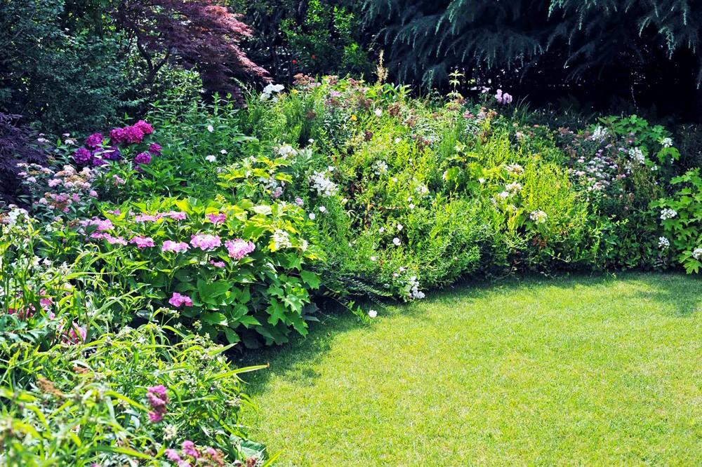 Colori sgargianti per un giardino inglese
